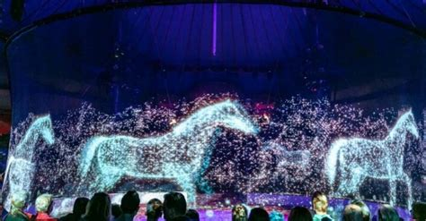 German circus goes cruelty-free by replacing animals with