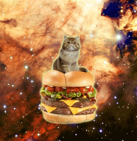 Animated GIFs of Cats Floating Amongst Galaxies